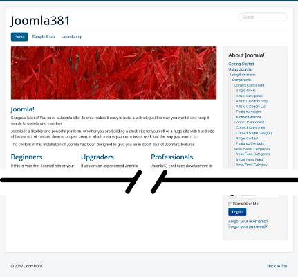 Screen capture of default Joomla 3.8.1 installation